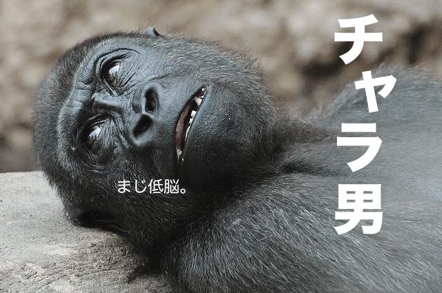 monkey-1346565_640