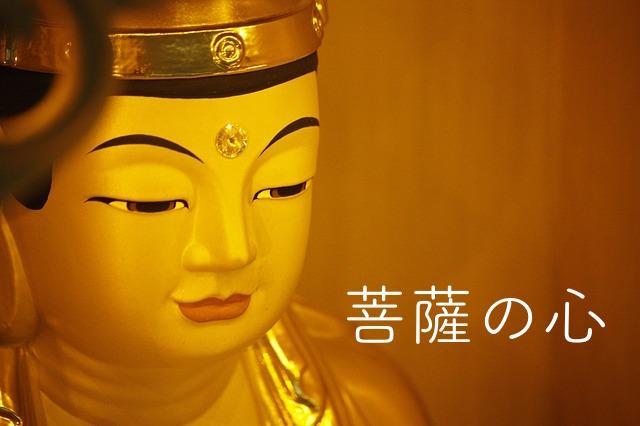 菩薩の心、菩薩の眼差し