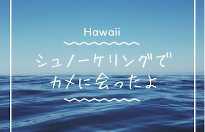 ハワイのシュノーケリングでカメに会ったよ