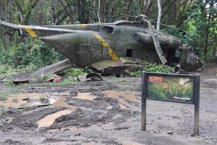 クアロアランチジャングル飛行機