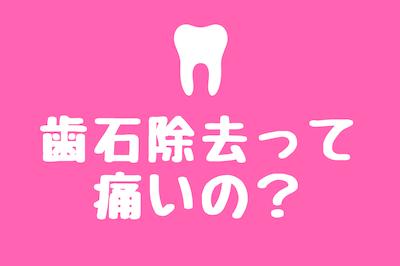 歯石除去痛い